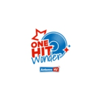 Logo of radio station Antenne MV - One Hit Wonder