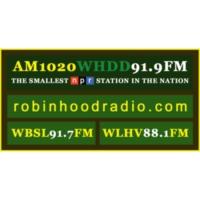 Logo of radio station WHDD 91.9FM