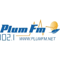 Logo of radio station Radio Plum'FM