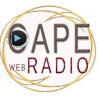 Logo of radio station OAPE WEB RADIO
