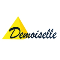 Logo of radio station Demoiselle FM