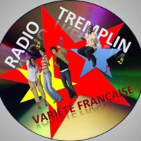 Logo of radio station Radio Tremplin