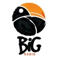 Logo of radio station BiG - Folk
