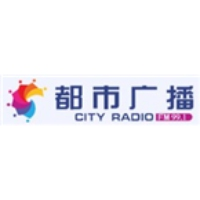 Logo of radio station Dalian City Radio 99.1
