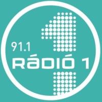 Logo de la radio Rádió 1 - 91.1 - Nyíregyháza