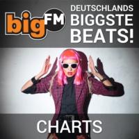 Logo of radio station bigFM Charts