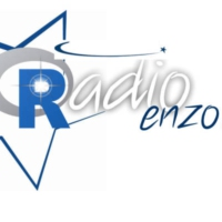 Logo of radio station Enzo FM
