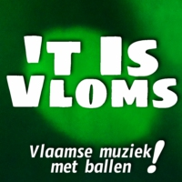Logo of radio station 't Is Vloms