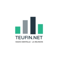 Logo of radio station Radio TeuFin