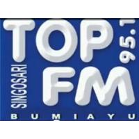 Logo of radio station Top 95.1