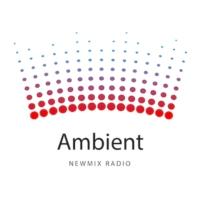 Logo of radio station Ambient NewMix Radio