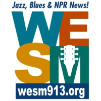 Logo of radio station WESM 91.3 FM