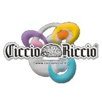Logo of radio station Ciccio Riccio 91.6 FM