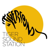 Logo of radio station Tiger Sound Station