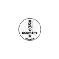 Logo de la radio Radio Skövde 90.4