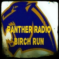 Logo of radio station Panther Radio Birch Run