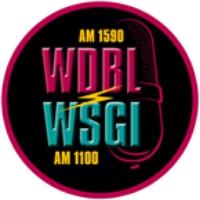 Logo of radio station WSGI 1100