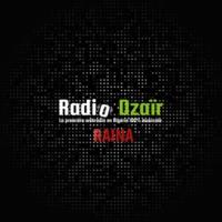 Logo de la radio Radio Dzaïr - Raïna