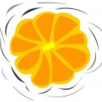 Logo de la radio Geras 101.9 FM