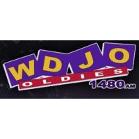 Logo of radio station WDJO Oldies 1480
