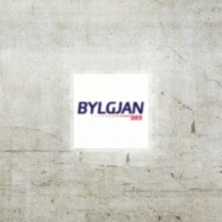 Logo of radio station Bylgjan The Wave 98.9 FM