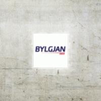 Logo de la radio Bylgjan The Wave 98.9 FM