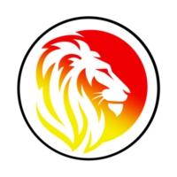 Logo of radio station Belgique FM