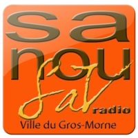 Logo of radio station SanouSAV Radio