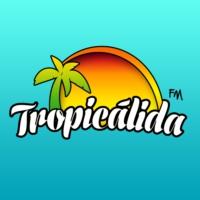 Logo of radio station Radio Tropicalida 91.3