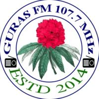 Logo de la radio Guras FM