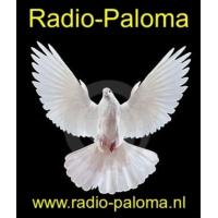 Logo de la radio radio paloma nl