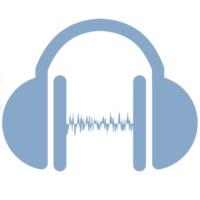 Logo of radio station Transylvania Hits