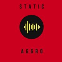 Logo of radio station Static: Aggro