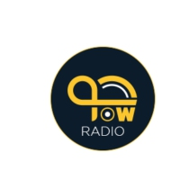 Logo of radio station JOW RADIO