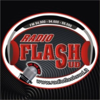 Logo of radio station Radio Flash Sud