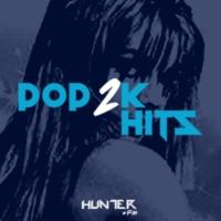 Logo of radio station Hunter.FM Pop2K