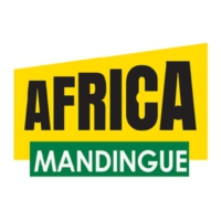 Logo of radio station Africa N°1 Mandingue