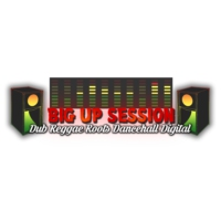 Logo de la radio Big Up Session
