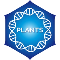 Logo of radio station Positivity Plants