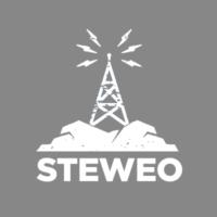 Logo de la radio Steweo