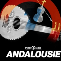 Logo of radio station Medi1 - Andalouse