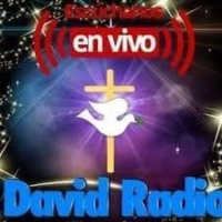 Logo of radio station David Radio
