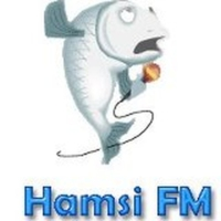 Logo of radio station Hamsi FM