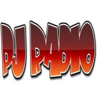 Logo of radio station PJ Radio