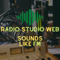 Logo of radio station Radio Studio Web