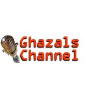 Logo of radio station Apna eRadio Ghazals
