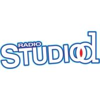 Logo of radio station Radio Studio D Srebrenik