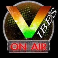Logo of radio station Vibes On Air