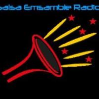 Logo of radio station Salsa Emsamble Radio