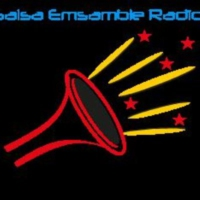 Logo of radio station Salsa Emsamble Radio